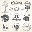 Cute Autumn Illustrations and Badges Set in Vintage Style — Stock Vector #65581613