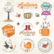 Cute Autumn Illustrations and Badges Set — Stock Vector #65581617