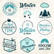 Winter Illustrations and Badges Set — Stock Vector #65581775
