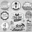 Summer Holiday Calligraphic Designs, Badges and Labels in Vintage Style — Stock Vector #65584243
