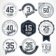 Anniversary Badges and Labels in Vintage Style — Stock Vector #65673233