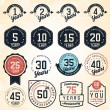 Anniversary Badges and Labels in Vintage Style — Stock Vector #65673241