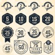 Anniversary Badges and Labels in Vintage Style — Stock Vector #65673245