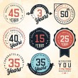 Anniversary Badges and Labels in Vintage Style — Stock Vector #65673247