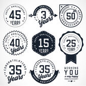 Anniversary Badges and Labels in Vintage Style — Stock Vector
