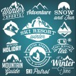 Collection of Winter Sports Badges and Labels. Vector Design Elements in Vintage Style — Stock Vector #65761079