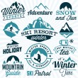 Collection of Winter Sports Badges and Labels. Vector Design Elements in Vintage Style — Stock Vector #65761081