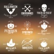 Vintage Typography Halloween Vector Badges or Logos Pumpkin Ghost Scull Bones Bat Spider Web and Witch Hat With Abstract Background — Stock Vector #55363261