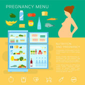 Pregnancy Menu Food Flat Style Vector Infographic Elements or Icons — Stock vektor