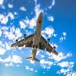 Airplane ready for landing — Stock Photo #59197861