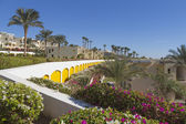 Houses for travelers on the hotel Grand Oasis Resort — Stock Photo