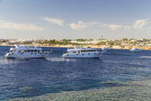 Dive boats is waiting for clients — Stock Photo