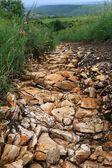 Erosion des Bodens durch den Fluss von der Stream-Regenwasser — Stockfoto