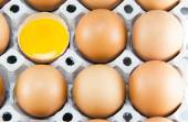 Brown eggs in detail on a tray — Stock Photo