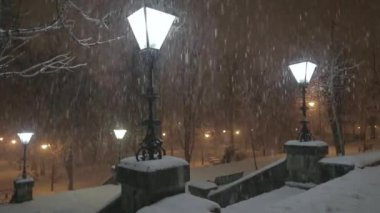 Lamp in the snowstorm at night — Stock Video
