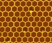 Natural Background with Honeycombs — Stock fotografie
