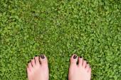 Feet standing on grass — Stock Photo