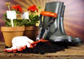 Watering Can and Gardening Gloves — Stock Photo