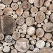 Wood texture background have many log that cut from big tree and — Stock Photo #58033017