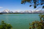 Jackson Lake — Stock Photo