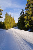 Road covered with snow — Stock Photo