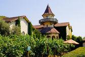 House near Sonoma Valley winery — Stock Photo