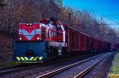 Locomotive wagons train rails sleepers trucking logistics forest sky wire transport — Stock Photo
