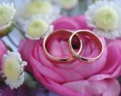 Wedding rings on pink flower — Stock Photo