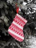 Christmas sock on fir tree — Stockfoto