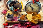 Old alarm clock, rowan and autumn leaves on wooden table — Stock Photo