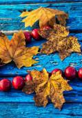 黄色の葉とビーズ — ストック写真