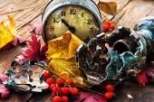 Rowan, yellow leaves and old clock — Stock Photo