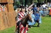 Reconstruction of jousting on horseback — Stock Photo