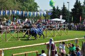 Jousting on horseback, Minsk — Stock Photo