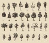 Trees sketch set, — Stock Vector