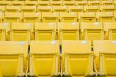 Empty Chair at Grandstand — Stock Photo
