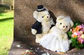 Teddy Bears in wedding costumes — Stok fotoğraf
