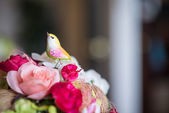 A fake bird and Colorful rose — Stock fotografie