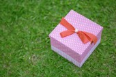 A pink gift box on grass — Stock Photo