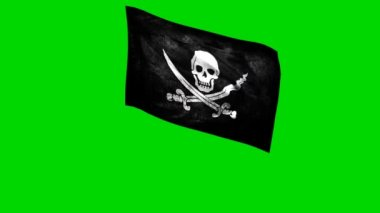 Pirate flag — Stock Video