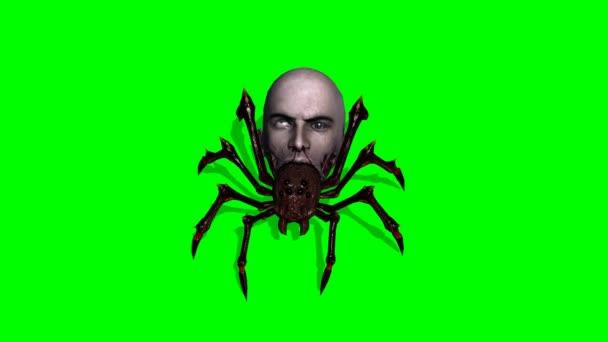 Araña mala con cabeza humana — Vídeo de stock