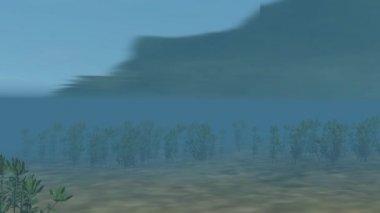 Carp swims under water — Stock Video