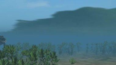 Crocodile swims under water — Stock Video