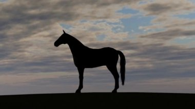 Horse silhouette Rise in Sunset — Stock Video
