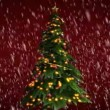 Christmas tree on red background — Stock Video #67856513