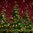 Christmas trees on green background — Stock Video #67856939