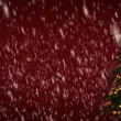 Christmas tree on red background — Stock Video #67857627