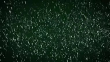 Snow flakes falling on green background — Stockvideo