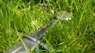Medieval sword in grass — Stock Video