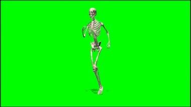 Male skeleton runs — Stock Video